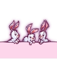 banner with cute cartoon rabbits vector image vector image