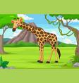 cartoon giraffe in jungle vector image vector image
