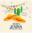 festa junina decorative background design vector image