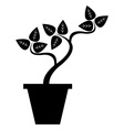 pot with plant vector image vector image