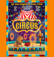 circus show amusement carnival performance vector image