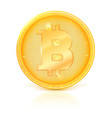 coin of virtual currency bitcoin with shadow and vector image vector image