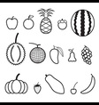 Fruit Line Icon vector image