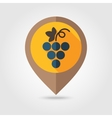 Grapes flat mapping pin icon vector image vector image