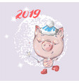 hello 2019 cute pig new year animal symbol merry vector image vector image