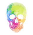 human skull with rainbow watercolor splashes on a vector image vector image