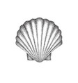 scallop shell dotwork art vector image vector image
