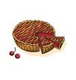 watercolor cherry pie vector image