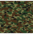 camouflage pattern vector image vector image