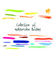 collection of watercolor brushes vector image