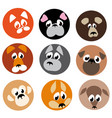 image animal beasts icons vector image