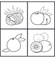 PeachKiwifruit CoconutGrapefruit vector image vector image