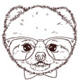 pomeranian dog head with bow-tie and glasses vector image vector image