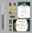 professional certificate template with badge vector image
