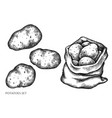 set hand drawn black and white potatoes vector image