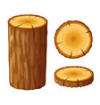 tree wooden stump with rings cut trees isolated vector image vector image