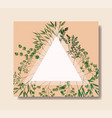 triangular frame with laurel leafs vector image vector image