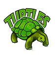 turtles logo vector image