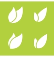 Leaf Pair Icon on Both Solid vector image vector image