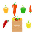 pepper in brown paper bag vector image vector image