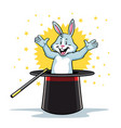 rabbit in the magic hat vector image vector image