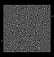 square maze vector image
