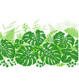 Tropical plants green pattern vector image