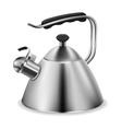 Steel whistling kettle vector image