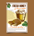 honey in bottle and honeycombs on poster vector image