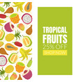 tropical fruits sale banner template with fresh vector image vector image