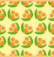 berries seamless pattern vegetarian with vector image vector image