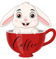 cute rabbit sitting in a red cup vector image vector image