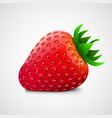 fresh realistic strawberry isolated on white vector image