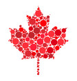 maple leaf dotted design isolated on white vector image vector image
