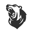 bear mascot black emblem head on white background vector image vector image