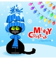 Black cat in a blue hat and scarf looks at the vector image vector image