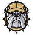 Bulldog head and baseball cap vector image