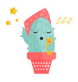cute sleeping cactus vector image vector image