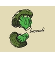 hand drawn broccoli vector image vector image