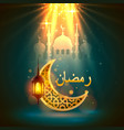 ramadan kareem cover vector image vector image