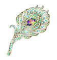 brooch jewelery peacock feather with gems vector image