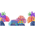 Coral reef on the rocks vector image vector image
