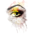 eye made colorful splashes vector image vector image