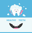 healthy tooth holding paste and brush bubbles vector image vector image