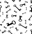 keys vector image vector image