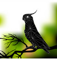 parrot on a branch abstract silhouette of vector image
