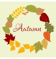Frame with autumn leaves and rowan fruits vector image vector image