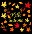 hello autumn card with colored autumn leaves vector image vector image
