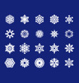 holiday set snowflakes christmas collection of vector image vector image