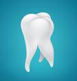 Human healthy tooth vector image vector image